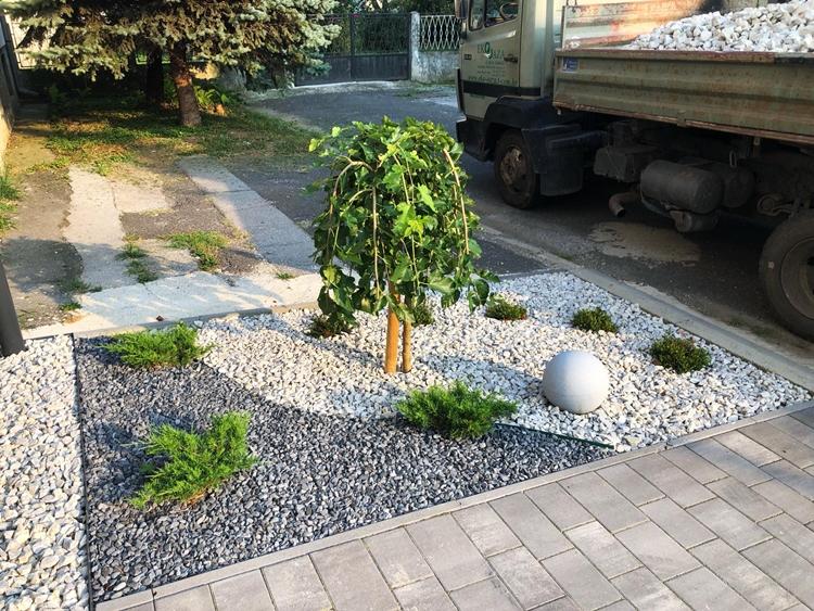 ukrasno_cvijece_grmlje_drvece_uredjenje_okolisa_hortikultura_oaza_03